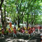 仙台は青葉が美しいお祭りの季節到来です(^^)